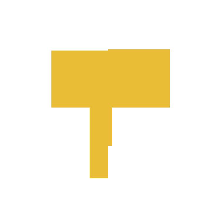 T_1 neu